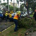 Brigadas del #ADN trabajando después del paso de la tormenta Erika #RobertoSigue http://t.co/x6gbkpQPid