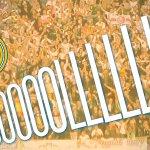 EN DIRECTO | ¡Golazo de James Rodríguez! ¡Golazo de chilena! Real Madrid 4-0 Betis http://t.co/hX4jd11iwW http://t.co/6s9gyIcPVw