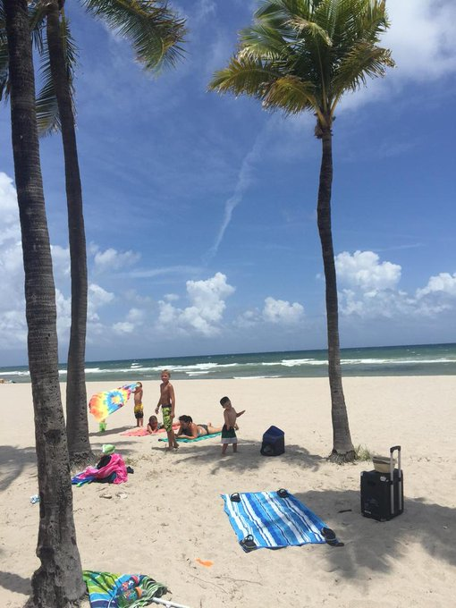 palm beach from twitter @AdamEKonopka