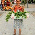 هذا المكان يعرفه كل سكان قطاع #غزة ! شاهد الممرات وسيارة الأطفال والأشجار وهذا الملاك المبتسم http://t.co/qeOhXc34tm