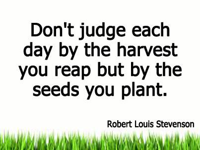 Don't judge each day by the harvest you reap but by the seeds you plant. ~Robert Louis Stevenson #MotivationalQuote http://t.co/NZeay2s1Fb