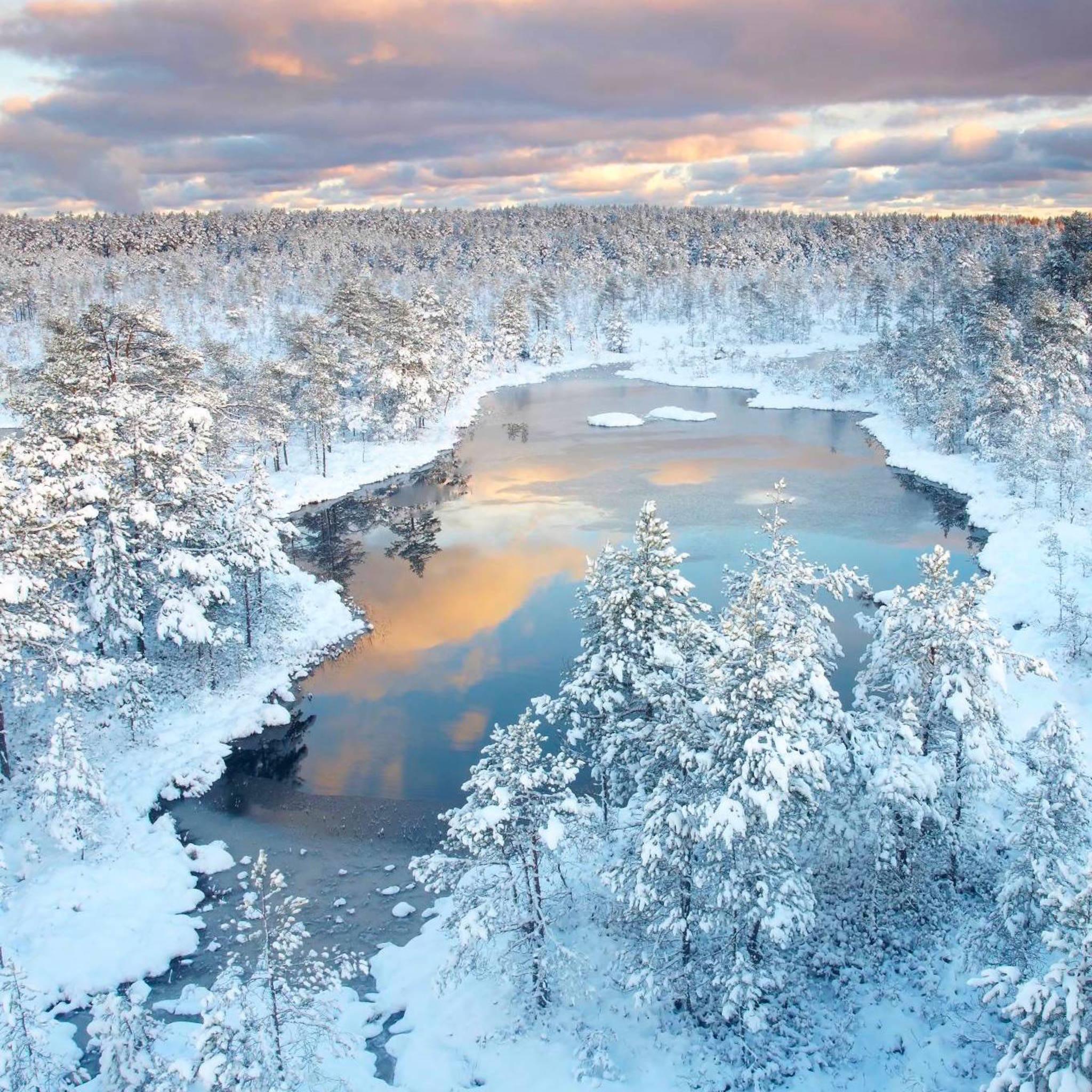 Winter Wonderland   Photo by Jan Lepamaa http://t.co/XhBFRjtKFP