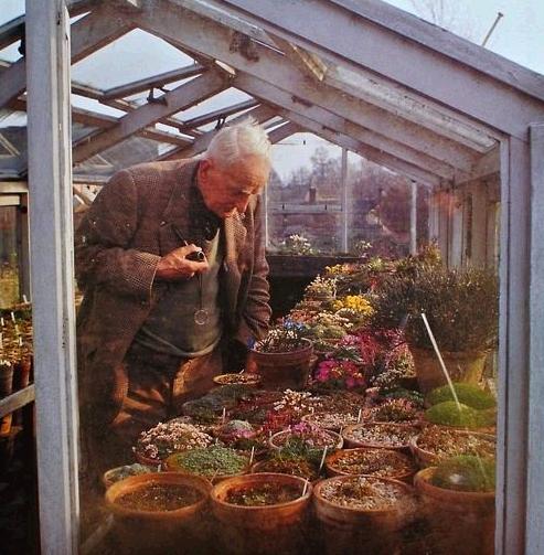 J. R. R. Tolkien in his Greenhouse. http://t.co/pU6RSSjrcA