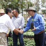 Pdte. @JuanOrlandoH respalda programa que renovará un millón de plantas de café. http://t.co/gj24pqCu2x