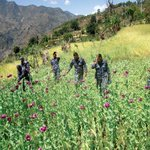 Farmers in western #Nepal are lured to grow opium by Indian middlemen http://t.co/bEBnrJqbqQ http://t.co/RhjWtXQ2aA