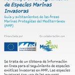 MedMIS, una APP para colaborar en el Seguimiento  de Sp Marinas Invasoras  https://t.co/YBZf97yK1z http://t.co/C89vJogA90