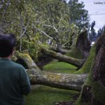 Two killed, half-million lose power in #Seattle-area windstorm: http://t.co/45S6IwMPjQ @lindseywasson http://t.co/0RXlmUgDkv