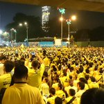 Yellow shirt #Bersih4 rally participants as far as I can see- phone photos, chants, songs, like a political carnival! http://t.co/cpujWQSdkY