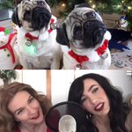 Losing my shit every time @Laura_Byrnes & @MichelinePitt do a synchronised PUG head tilt on the @teampinup #Periscope http://t.co/ATem6oj0e7