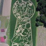 """Вид с высоты птичьего полета кукурузного поля с лабиринтом в честь 150летнего юбилея """"Приключения Алисы вСтранеЧудес"""" http://t.co/XdxMs4WQtB"""