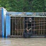 В Уссурийске оказался затоплен зоопарк, несколько животных погибли http://t.co/tGWsl07YcU http://t.co/oSPU19Rofe