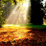 ياااااارب .. كلما غمرت السماء بالنور .. مدّ النور لقلوبنا وبصائرنا .. #صباح_الخير ???????? http://t.co/52Yi25856x