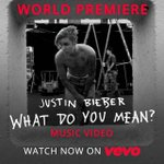 """@DefJamRecords: Watch the new music video for @justinbieber ""What Do You Mean?"" now! http://t.co/Cq5wxVlf5d http://t.co/hagZCgxsdx"" 😍😍"