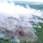 Сто парашютистов-пожарных направлены на борьбу с огнем в Бурятии ВИДЕО: http://t.co/dFAwM92H7A Фото: МЧС РФ #МЧС #лес http://t.co/sQNb2Dy4X1