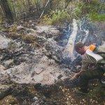 Более 150 тыс. га лесов горят в Бурятии http://t.co/7o3bfdk3Uw http://t.co/D2TO836vWP
