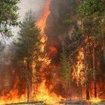 Площадь лесных пожаров в Бурятии превысила 150 тысяч гектаров http://t.co/CwB6hD0J5a http://t.co/0UgaBeq8Vc