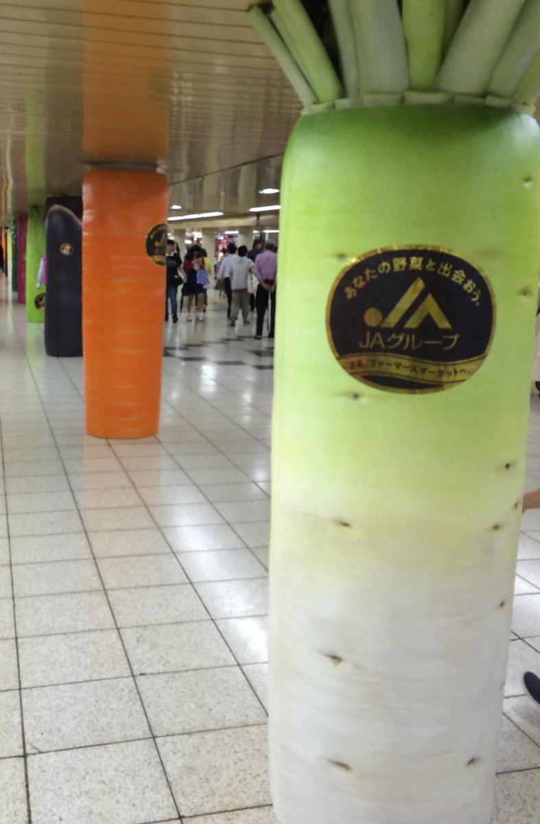 新宿駅の野菜ェ http://t.co/gcZSQaMDml