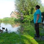 Help, de eenden zwemmen in mijn tuin! Deel je #wateroverlast fotos/ervaringen op http://t.co/FbgdZPCPMN #dordrecht http://t.co/j6LWRQ41fb