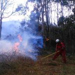 #Bomberosloja controló incendio forestal la tarde y noche de ayer en la parroquia El Cisne. http://t.co/ildJrUVAxi