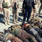 """مقتل خمسة عناصر من """"#داعش"""" شرق #الرمادي http://t.co/oq580obQX6 #الصورة من #الارشيف http://t.co/jJwL457P18"""