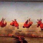 داعش يشوون ثلاثة اشقاء ووالدهم في الرطبة وهم من عشيرة الكبيسات بمحافظة الانبار (من اهل السنه)داعش لنصره اهل السنه!! http://t.co/HPZuS6vEMc