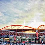 Mais lindo do Mundo, meu Benfica #carregabenfica http://t.co/s3H8EVY5aN