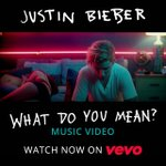 What do you mean this is the official music video? http://t.co/ypBUPEdAk3 #WhatDoYouMean http://t.co/TzYtIlVDrX