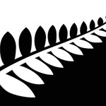 The final four flags New Zealanders will vote on have been revealed (corrected) http://t.co/0NNTE3OwYJ http://t.co/5k6do0Xxy5