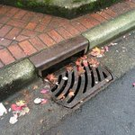 Lots of rain & debris out there. Please keep storm drains clear. Thanks! #NorthVan http://t.co/b2cxX9PPl4 http://t.co/DrmCeqwszT