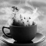 """Von """"Iiih, is dat eklig schwül"""" zu Fleecejackeanziehgeräusch in nur einer Nacht. Moin Ersma Kaffee http://t.co/4jZJvCkYHj"""