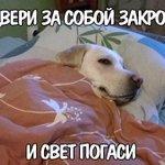 Все мы им завидуем по утрам) Хорошего дня) http://t.co/knD3B4e9GI