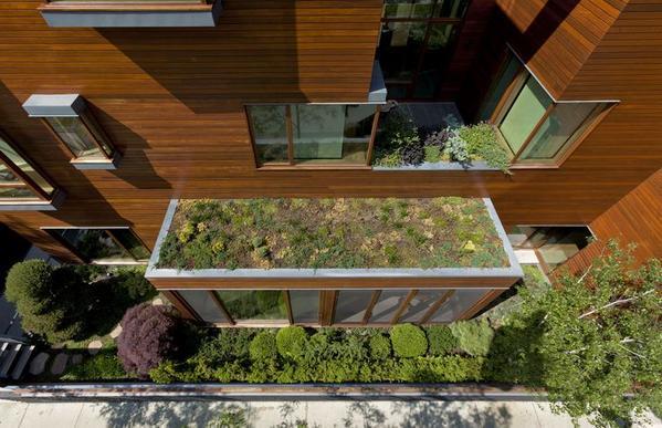 Vele kleine #groenedaken maken uiteindelijk één groot #duurzaam groen dak... @DeGezondeStad @zeeger @IVNnoordholland http://t.co/rU5TKgBjnm