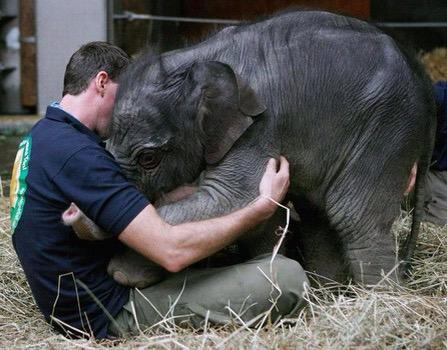 """A silent hug means a thousand words to an unhappy heart. https://t.co/pCyt8S3QeF "" || via ▶@ramblingsloa◀"