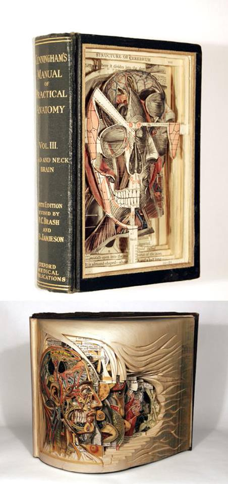 Artist Brian Dettmer meticulously dissects books w surgical tools. Nothing is added, only removed! V @DrLindseyFitz http://t.co/ly6IpFHS6a