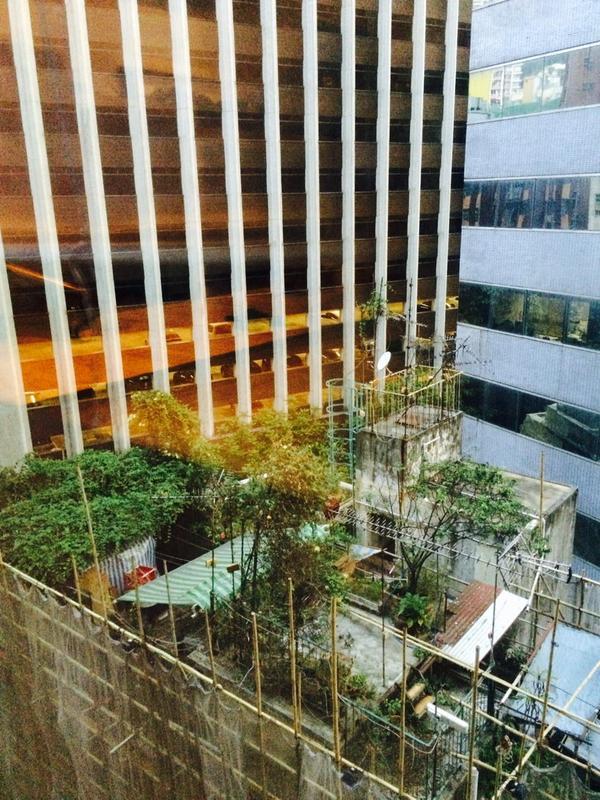 Ruimte in de #stad schaars? In Hong Kong lag er nog wat ruimte op de daken... #dakmoestuin @Rolf_Oldejans @Stadslab http://t.co/JR2CGxM88R