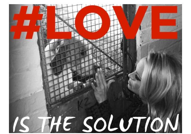 Love is the solution http://t.co/xcLliFpAYI