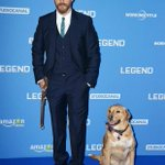 Tom Hardy took his dog to the premiere of his new film Legend. What a guy. http://t.co/yTwlP2mvp7
