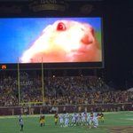 "Oh My God. The University of Minnesota has officially re-defined the ""distract the opposing field goal kicker"" game: http://t.co/V68y8er3bz"