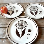 Blown away with these dandelion plates #gotvintage #plates #dinnerware #kitchendesign #home https://t.co/hen1iuEgMB http://t.co/GwiZ2fcQTy