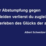 Viele Zitate des Friedensnobelpreisträgers Albert Schweitzer sind zu dessen 50. Todestag heute aktueller denn je. http://t.co/C7govBKN5S