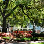 Yall come see us! MT @bluegreentweets: Savannah made our #BucketList of cities to explore! http://t.co/LhQVb5V9iB http://t.co/ObnvvRg5m8