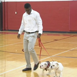 RB Elijah Holyfield, Evanders son, committed to UGA with the help of bulldogs named Chubb and Gurley (@FOX5Atlanta) http://t.co/GVu81PUur9