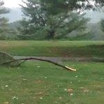 @KevinMyattWx @NWSBlacksburg @wxman7 1 to 1.5 inch limb down at Hidden Valley CC in Salem. http://t.co/s2QgCJzpUf