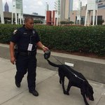Explosive Detection Canine teams helping keep Georgians safe at yesterdays events in #ATL http://t.co/ITZkygSONo