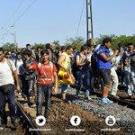 Suriyeli göçmenler, tren rayları üzerinden Macaristandan Avusturyaya doğru ilerliyor. http://t.co/OkQQYZVCEG http://t.co/Qf7909DjVd