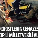 HDP VEKİLLER ALDIKLARI MAAŞI HAKETMEK İÇİN ORDUMUZUN ELİ KİRLENMESİN DİYE LEŞLERİ TOPLAYIP GÖMÜYORLAR...@sedat_peker http://t.co/Auo4hQZo4t