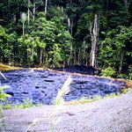 Tribunal Supremo de Canadá determinó que ecuatorianos podrán demandar a Chevron en ese país. http://t.co/4O3BeKK4vH http://t.co/kqgYzJUboO