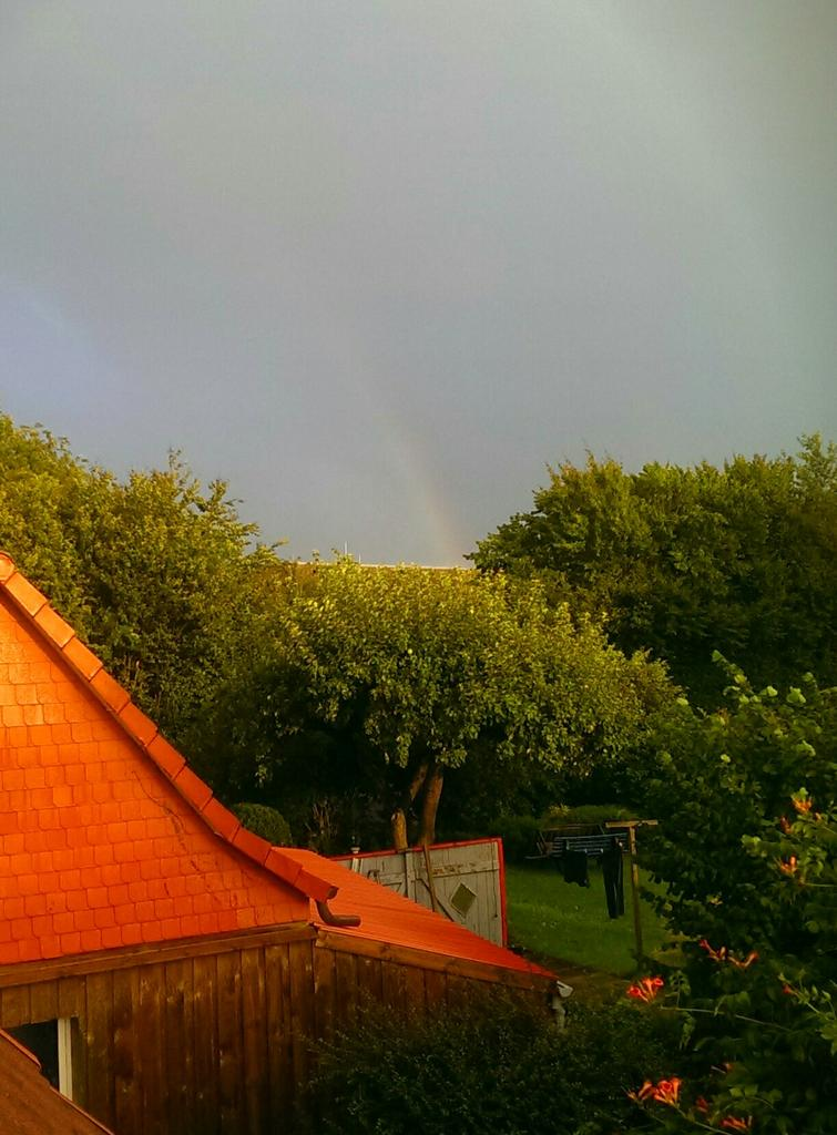 Current status:rainbow behind the apple tree . No bourbonado far and wide http://t.co/qDZyKDko2w