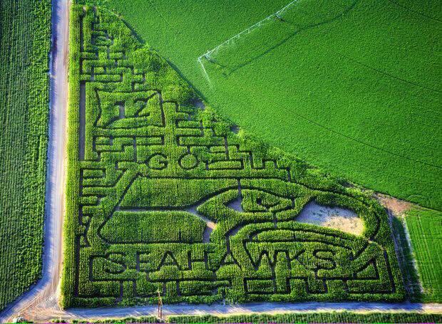 @Seahawks Prettt cool RT @mikewhitmore: #GoHawks from Pasco, WA http://t.co/JKnQo0LElB