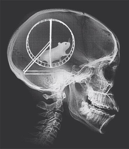 #BuckeyeNation, just in: #OhioState Wexner Medical Center released X-ray of Mark May's brain. #GoBucks #BeatVaTech http://t.co/dFw5oYVIt1